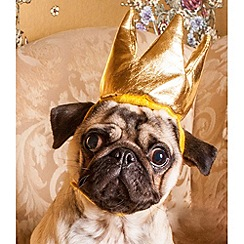 Spot & Mog - Novelty dog crown dress up