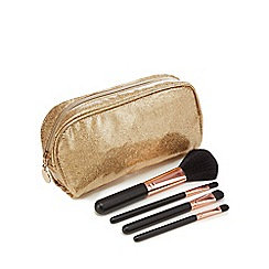 Academy of Colour - Set of three Brushes with Make up Bag