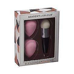 Academy of Colour - Blending Sponge Set
