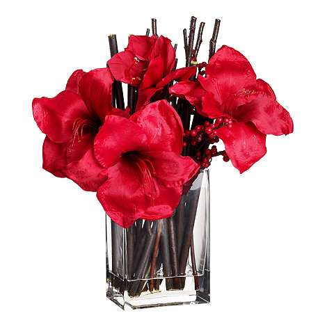 Grey Rose by Jane Packer - Red amaryllis flowers with berries