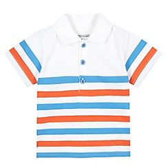 bluezoo - Babies white striped polo shirt