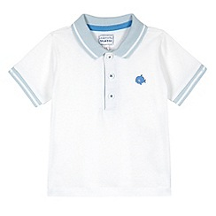 bluezoo - Babies white striped collar polo shirt