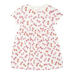 bluezoo - Baby girls' cream dragonfly dress