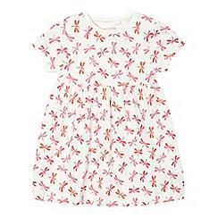 bluezoo - Baby girls' cream dragonfly dress