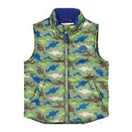 Boy's green dino printed gilet