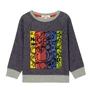 Boy's purple monkey sweater