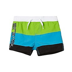 Animal - Boy's bright green cut and sew panelled swim shorts