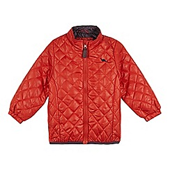 bluezoo - Boy's orange quilted jacket