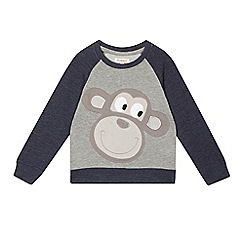 bluezoo - Boys' grey monkey jumper