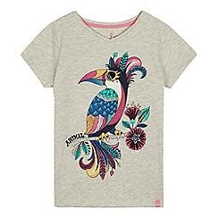 Animal - Girls' grey toucan print t-shirt