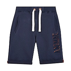 Animal - Boys' navy logo applique shorts