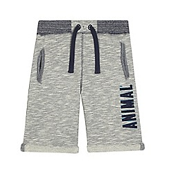 Animal - Boys' grey sweat shorts