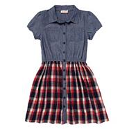Girl's blue checked shirt dress