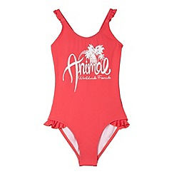 Animal - Girl's pink frilly trim logo print swimsuit