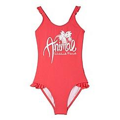 Animal - Girl's pink frilly trim logo print swimsuit