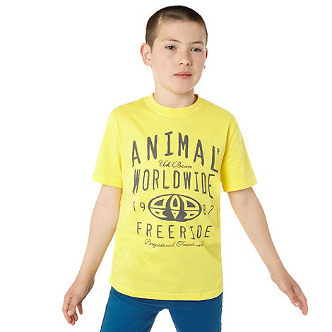 Animal - Boy+s Yellow Collegiate Script T-shirt