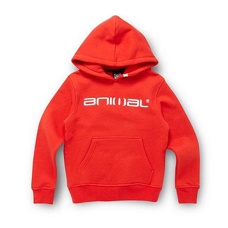 Animal - Boy+s red logo hoodie