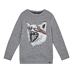 Animal - Boys' dark grey 'Echo Wolf' print sweatshirt
