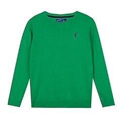 bluezoo - Boy's green crew neck jumper