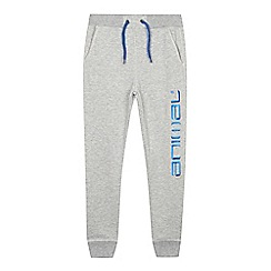Animal - Boys' grey side logo jogging bottoms