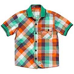 bluezoo - Boy's green checked rib collar shirt