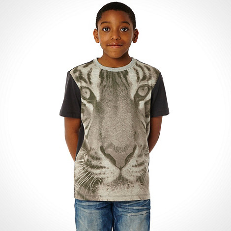 bluezoo - Boy+s dark grey tiger t-shirt