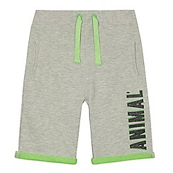 Animal - Boys' grey jersey shorts