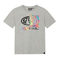 Animal - Boys' grey logo print t-shirt