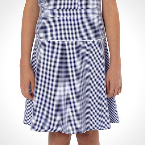 Debenhams - Online Exclusive - Girl+s pack of two navy gingham school uniform skirts