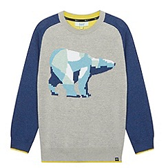 Baker by Ted Baker - Boy's  grey polar bear jumper