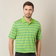 Lime multi striped polo shirt