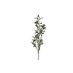 Gisela Graham - Multi-coloured mistletoe stem decoration