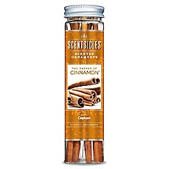 Festive - Pack of 24 'Scentsicles - Two Dashes Of Cinnamon' scents