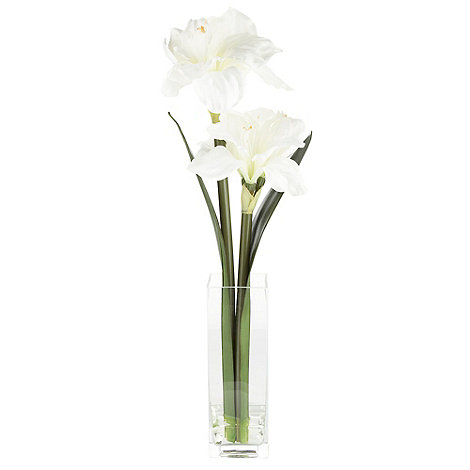 Grey Rose by Jane Packer - Cream amaryllis flowers in tall vase