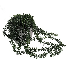Abigail Ahern/EDITION - Artificial String of Pearls Succulent