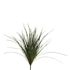 Abigail Ahern/EDITION - Artificial Wild grass loose stem