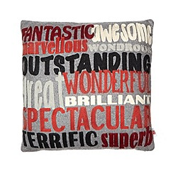 Ben de Lisi Home - Designer grey text cushion