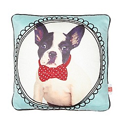 Ben de Lisi Home - Designer aqua puppy cushion