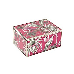 Butterfly Home by Matthew Williamson - Eden print small box