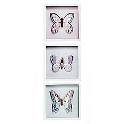 Butterfly Home by Matthew Williamson - Set of three butterfly wall art
