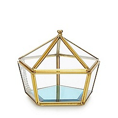 Butterfly Home by Matthew Williamson - Gold pentagon terrarium pot