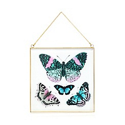 Butterfly Home by Matthew Williamson - Blue butterfly print hanging wall art