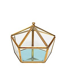 Butterfly Home by Matthew Williamson - Small metal edge pentagon pot