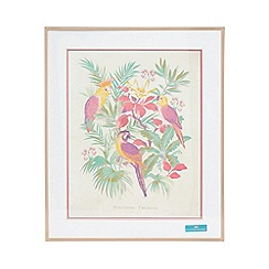 Butterfly Home by Matthew Williamson - Parrot wall art and frame