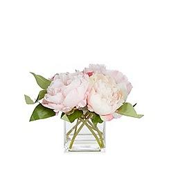 Debenhams - Pink peony flowers in vase
