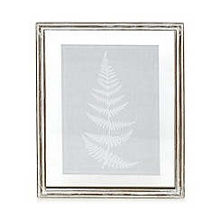 Debenhams - Fern tree wall art