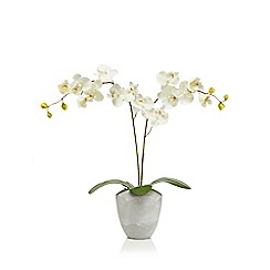 Home Collection - Ceramic vase with artificial orchid