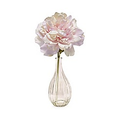 Debenhams - Glass vase of artificial peonies