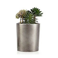 Home Collection - Artificial succulent in a metal pot
