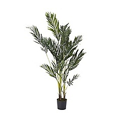 Home Collection - Artificial large areca plant